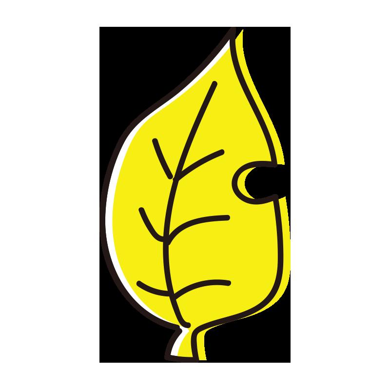 黄色の落ち葉
