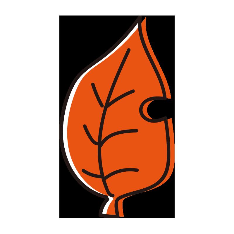 橙色の落ち葉