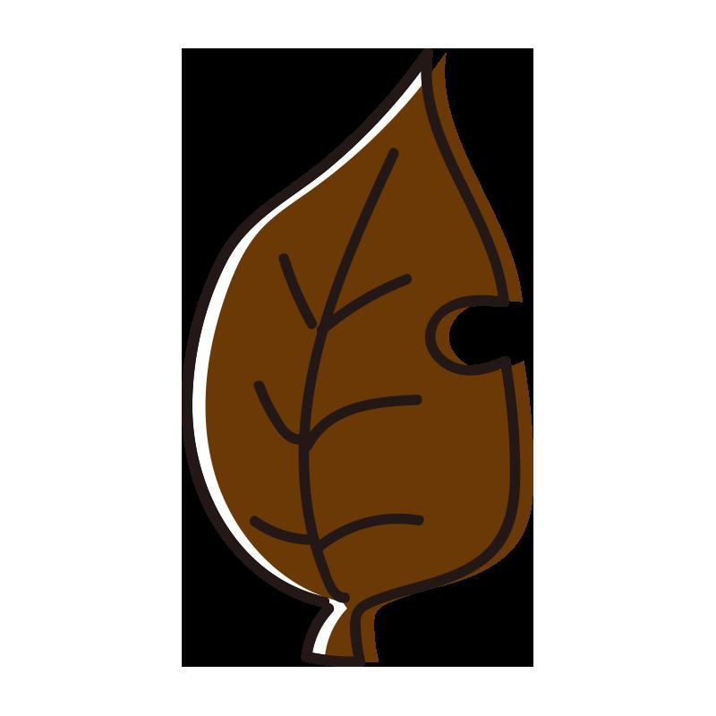茶色の落ち葉