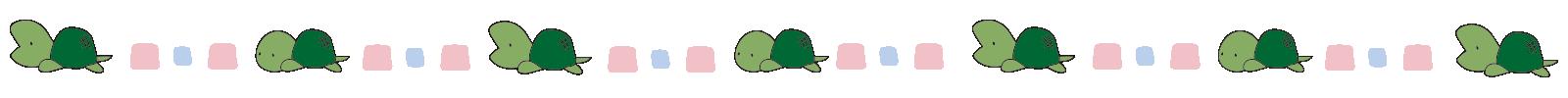 亀のライン