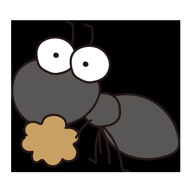 食べ物を運ぶアリ