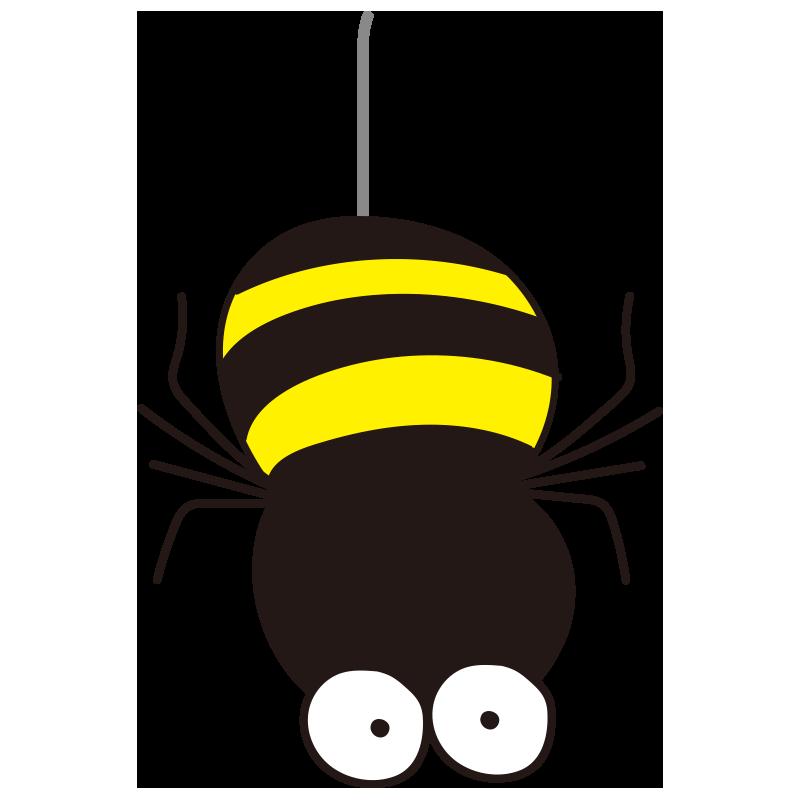落ちてくるクモ