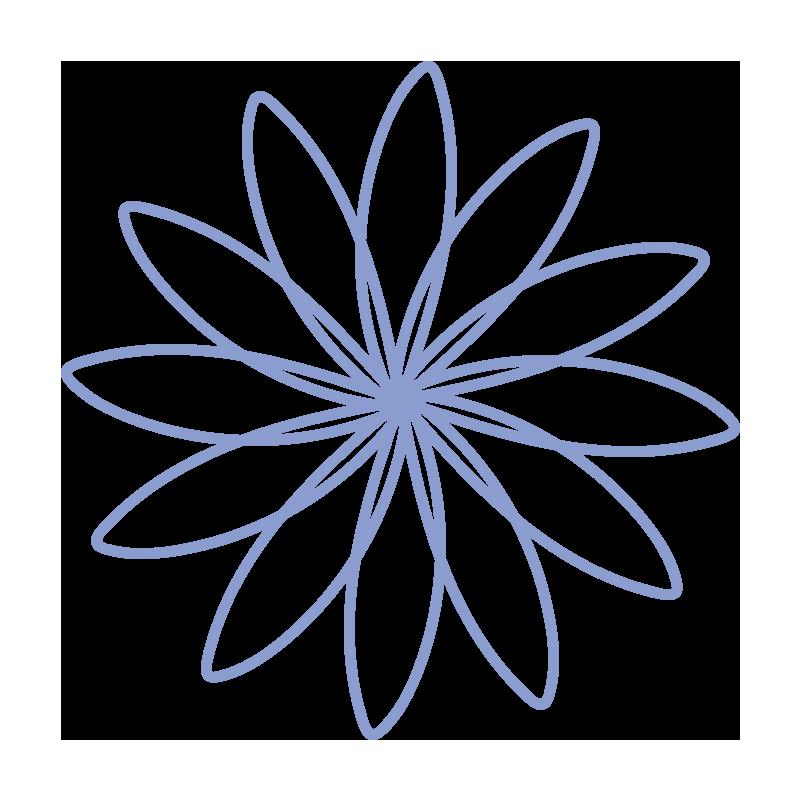 細い花びらの青いお花2