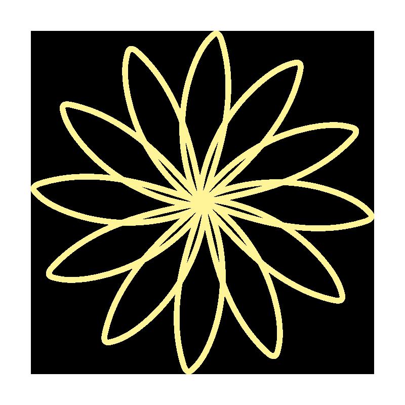 細い花びらの黄色いお花2
