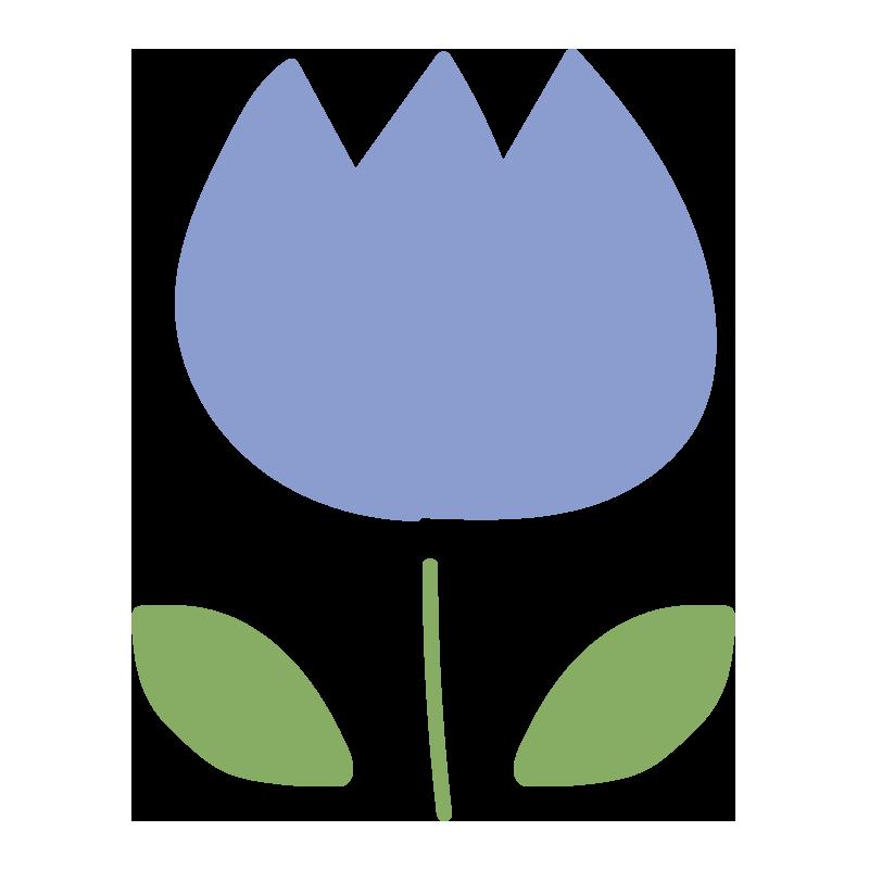 チューリップ(青)2