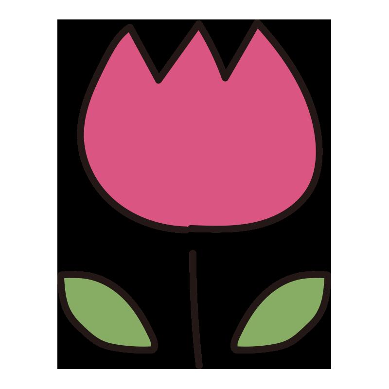 チューリップ(ピンク)1