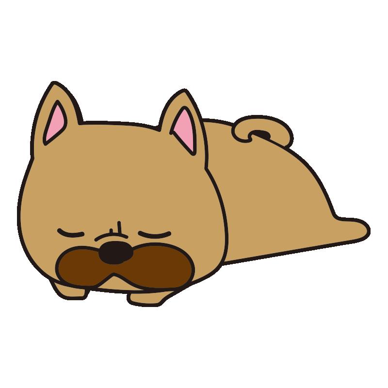 寝ているフレンチブルドッグ(茶)