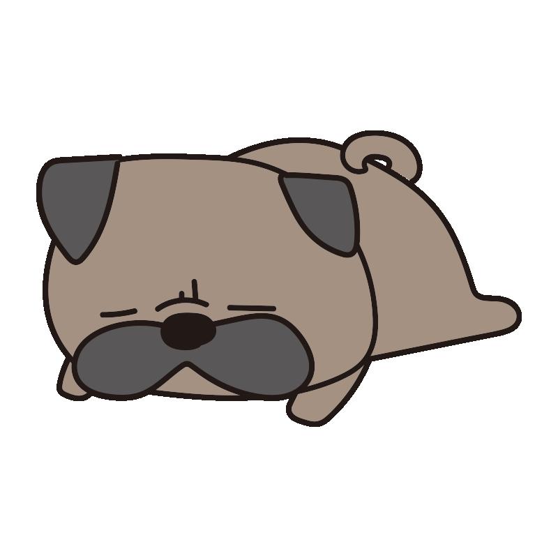 寝ているパグ