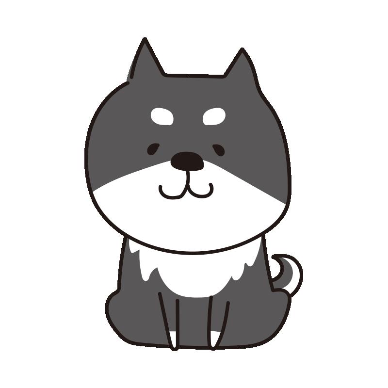座っている柴犬(黒)