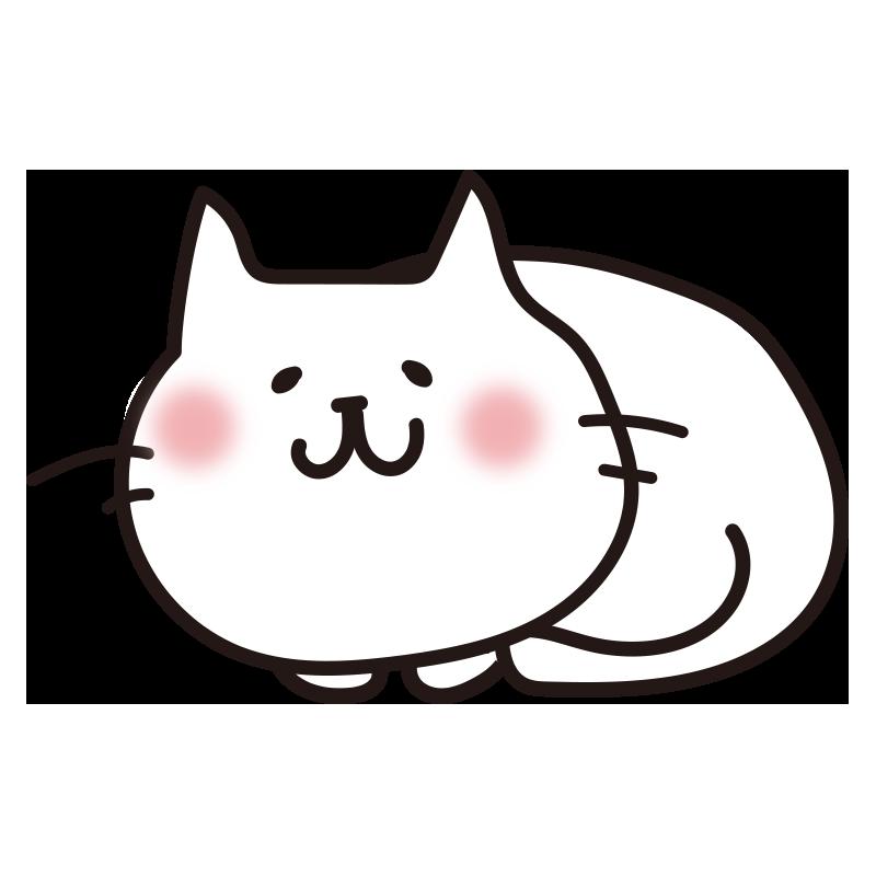 まるまった白い猫