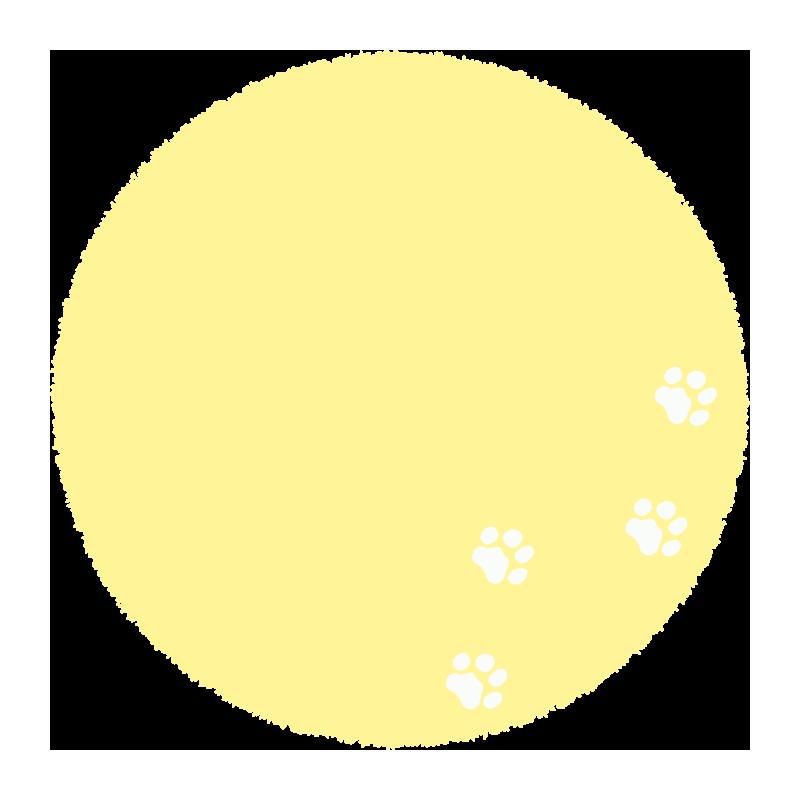 足跡のついた黄色い丸