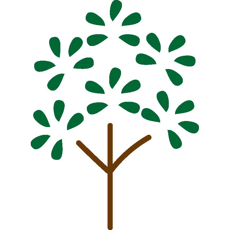 葉っぱがパッとなった木(緑)
