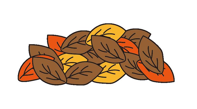山盛りの落ち葉