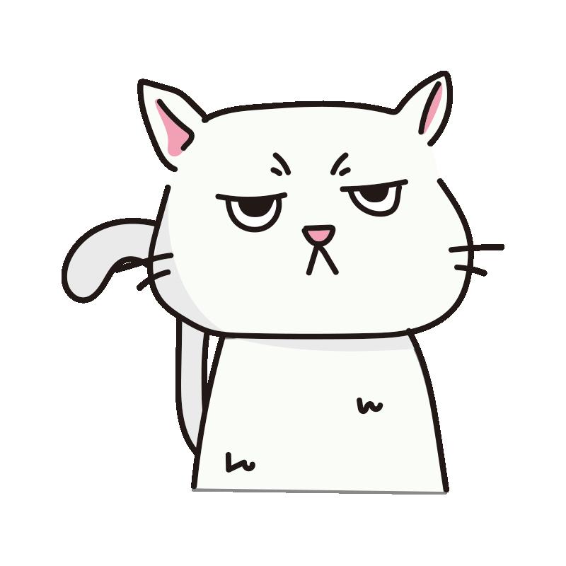 不機嫌なネコ(白)