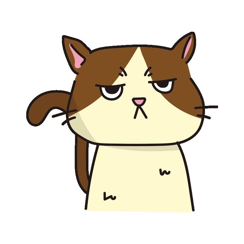 不機嫌なネコ(ハチワレ)
