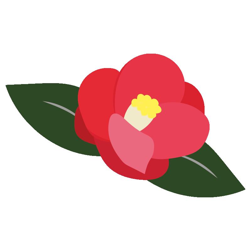 葉っぱ付きの椿の花