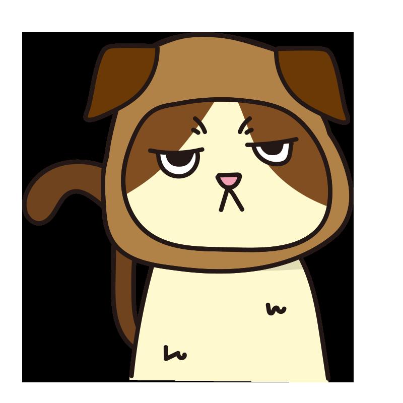 犬 のかぶりもので不機嫌な猫(ハチワレ)