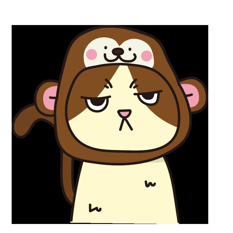 猿のかぶりもので不機嫌な猫(ハチワレ)