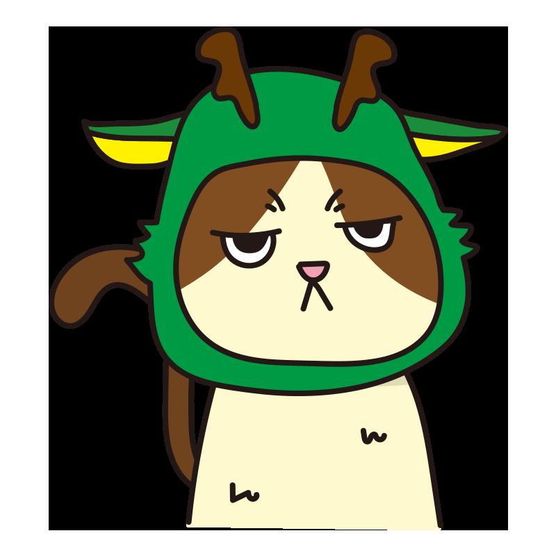 辰のかぶりもので不機嫌な猫(ハチワレ)