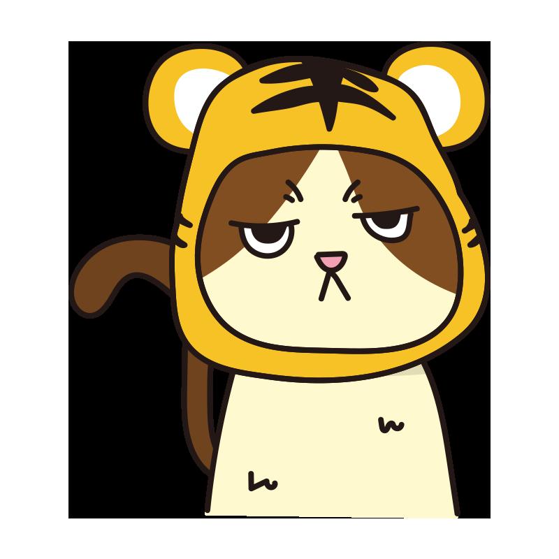 トラのかぶりもので不機嫌な猫(ハチワレ)