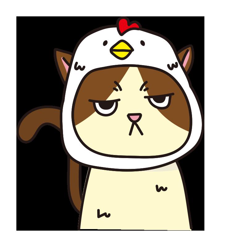鳥のかぶりもので不機嫌な猫(ハチワレ)