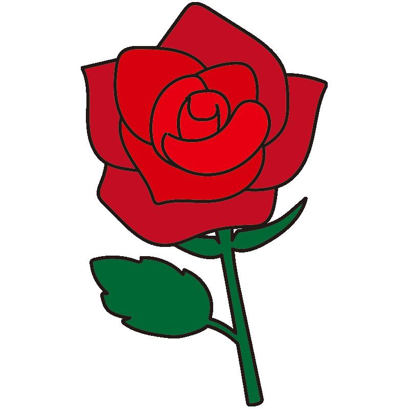 1本の赤いバラ1