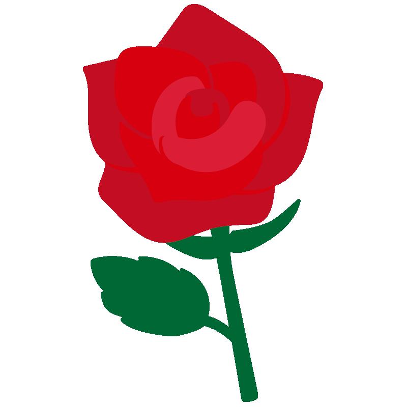 1本の赤いバラ2