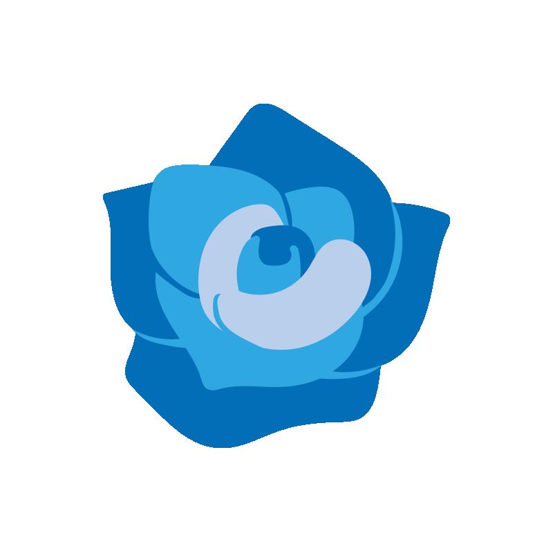 青いバラの花2