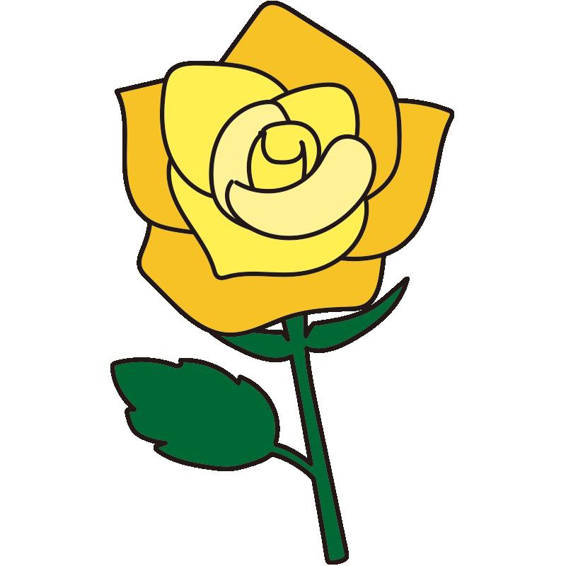 1本の黄色いバラ1