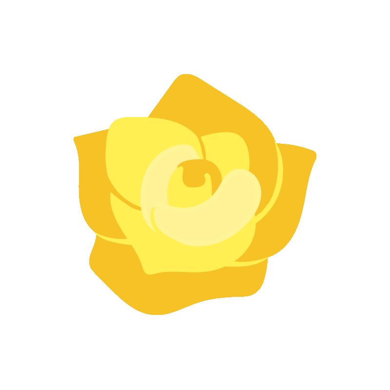 黄色いバラの花2