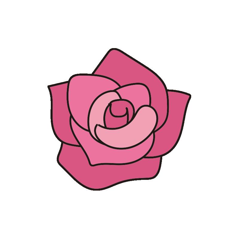 ピンクのバラの花1
