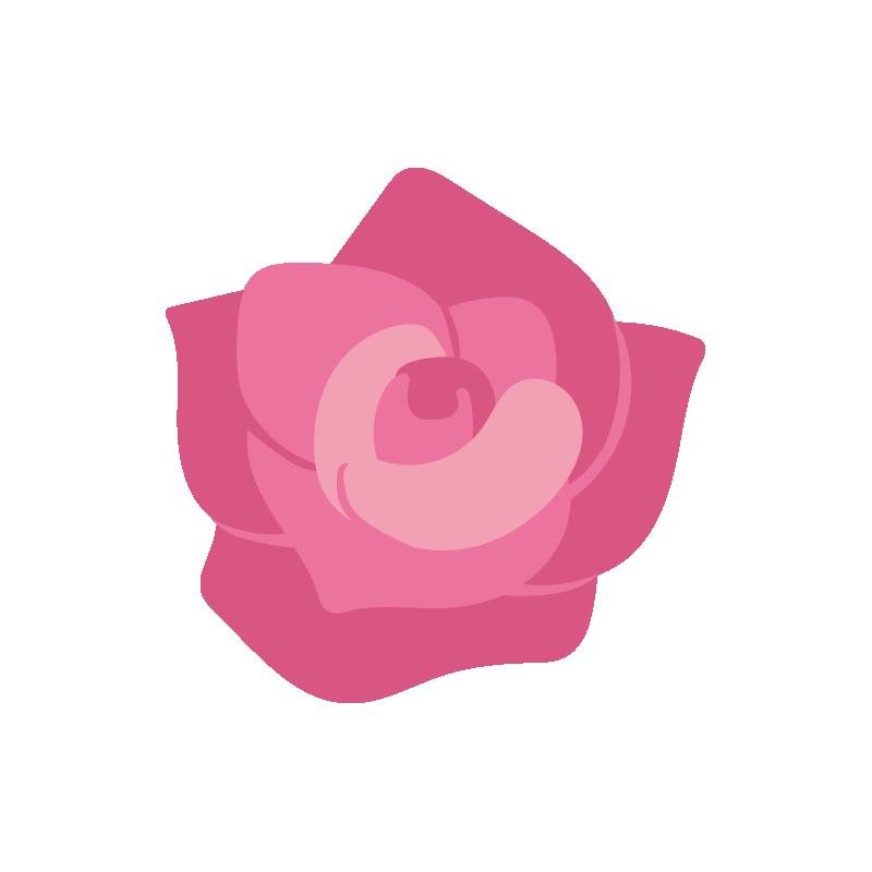 ピンクのバラの花2