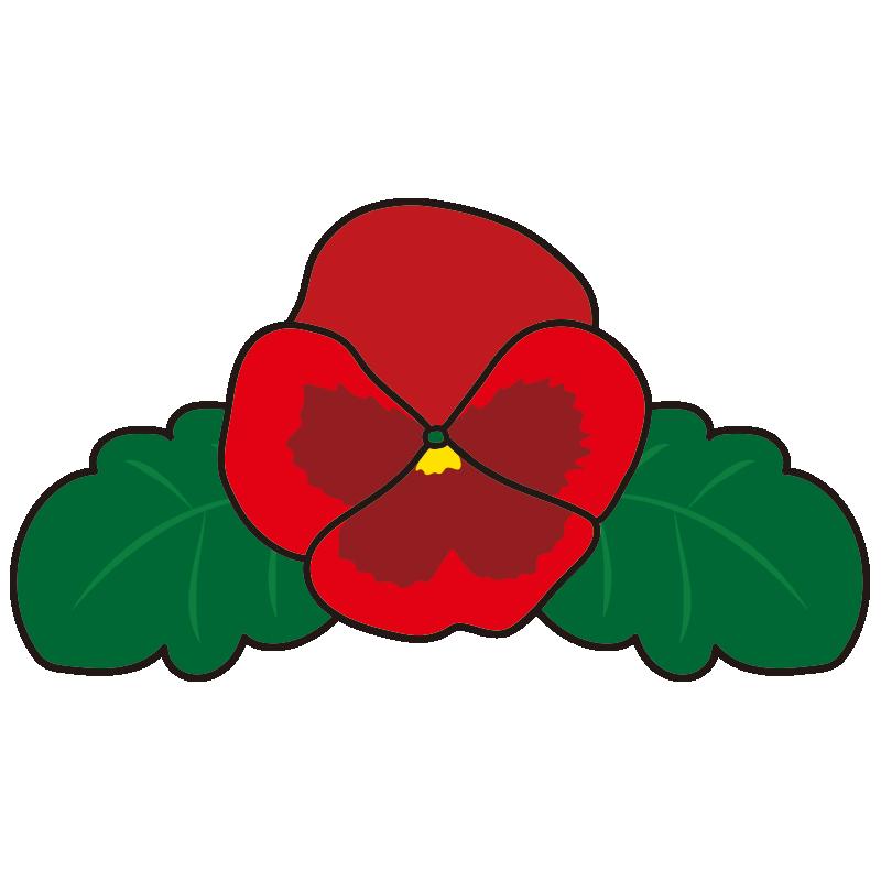 赤いパンジーの花1