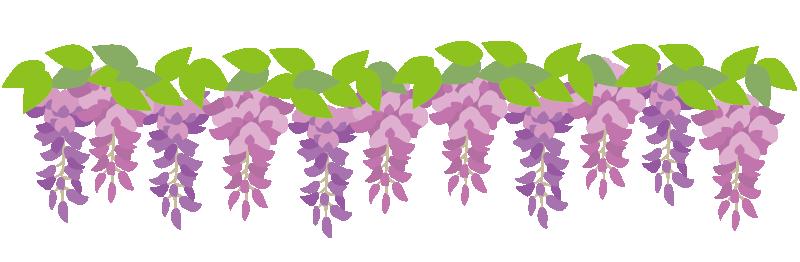 藤の花の枠2