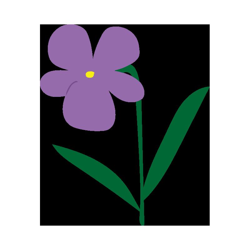 すみれの花3