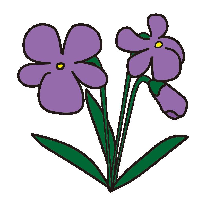 すみれの花2