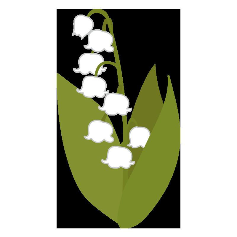 すずらんの花2