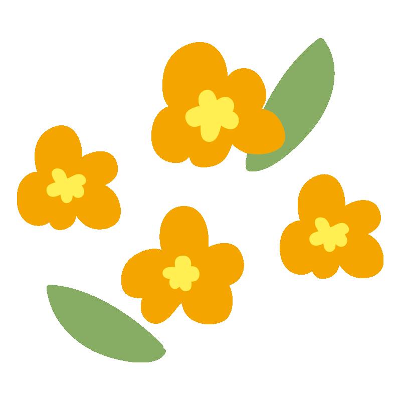 オレンジ色の小花