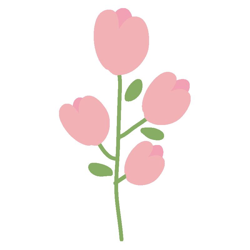 ピンク色の小花